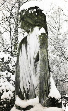 Stone Angel Snow